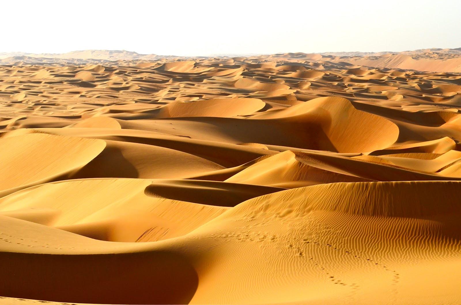 image Arab egypt hot desert rose aka prostitute