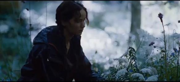 Rue S Farewell In The Hunger Games Sevenponds Blogsevenponds Blog