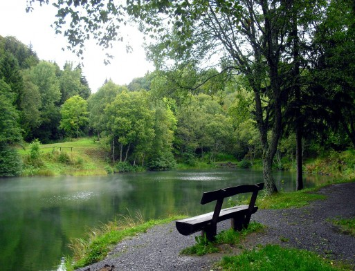 A nature scene with relaxing lake, green trees, and small rocks.