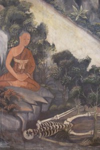buddhist monk practicing corspe mediation