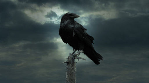 The Raven poem about grief
