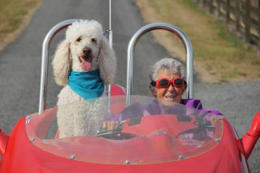 Norma and her standard poodle Ringo driving a bright red sports car as she faced death unafraid