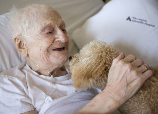 A hospice patient bonds with a new puppy