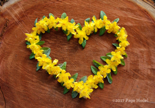 handmade heart of yellow flowers