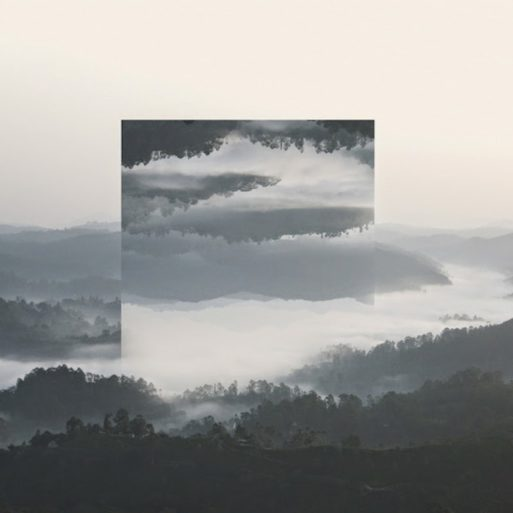 A photo of a forest next to a river, with the same image flipped upside down inside of the larger image, representing acceptance in the five stages of grief