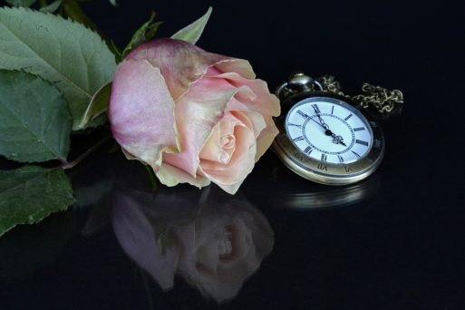 A rose and a pocket watch