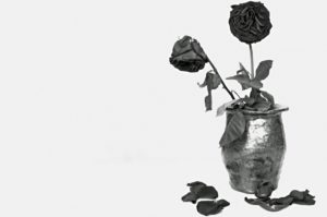 Dead roses of a broken heart