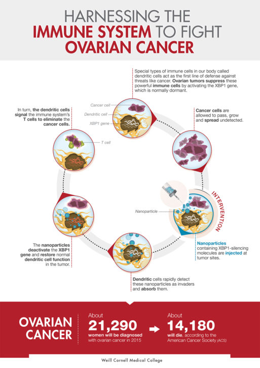 Chart showing how immunotherapy disrupts ovarian cancer