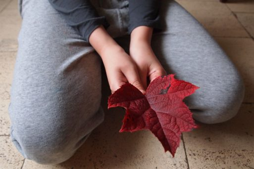 Kneeling on ground looking at leaf