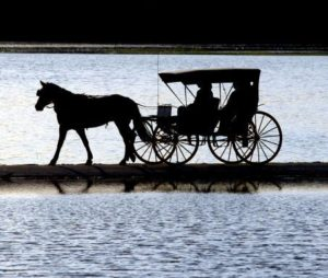 carriage ride over snow