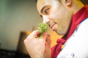 A man holds herbs up to his nose to identify their scent