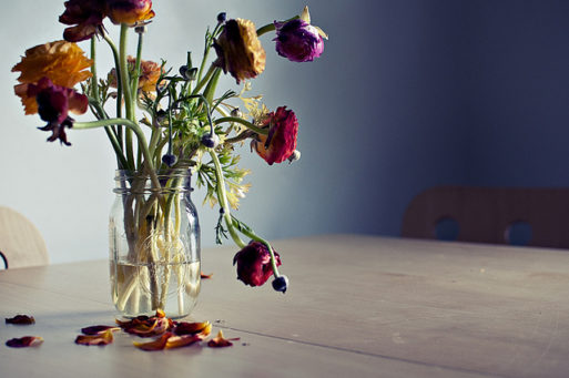 Dying flowers show effects of chemo and why people stop treatment