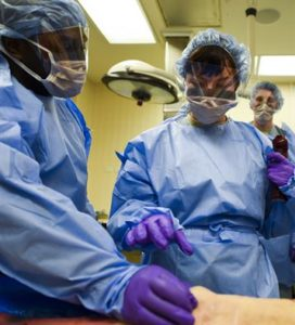 Two medical students work on a body, days before they will hold a memorial service for medical cadavers
