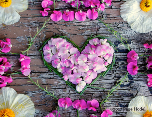 hearts made of pink and lavender flowers
