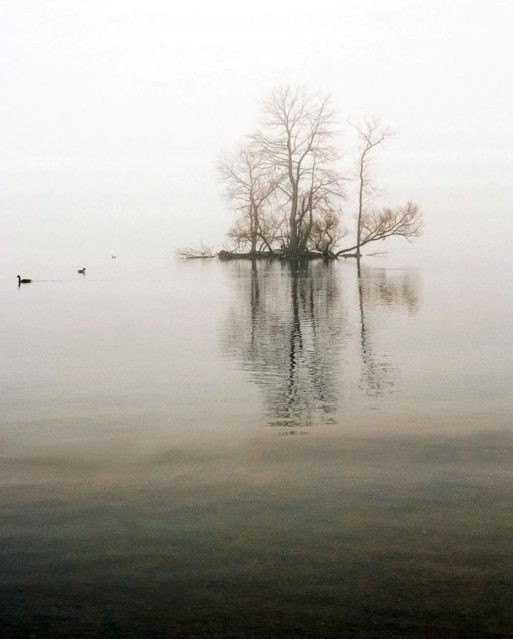 Photo a lake and trees in the distance symbolizes the isolation of grief and shame