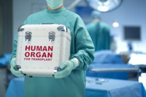 donor organ being carried by a doctor after opt-out organ donation