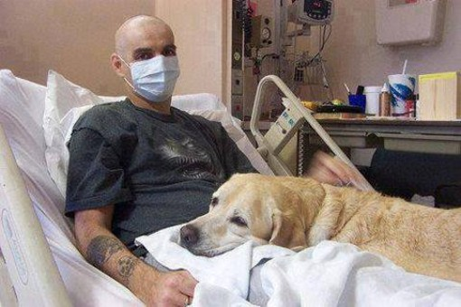 A dog offers comfort and companionship to ailing man
