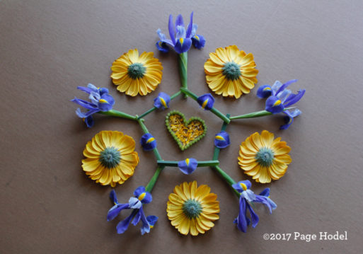 Handmade heart made of yellow and blue flowers