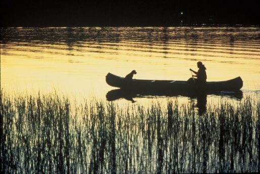 Lone man and his dog in a canoe on a river
