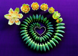 Handmade heart made of yellow flowers and green stems