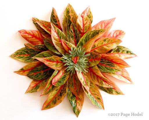 Handmade heart shaped like a pinwheel