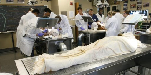 Medical school room in which students are working on cadavers, symbolizing what donated bodies are done with after death.