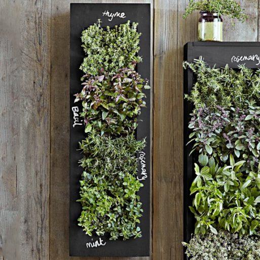 vertical herbs garden for someone grieving