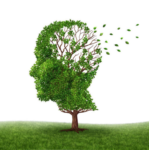 Graphic of a human head portrayed as a tree with leaves falling away symbolizing memory loss