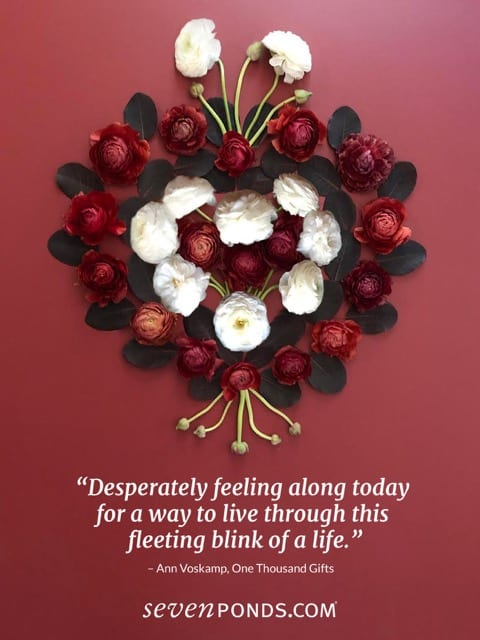 A Quote from Ann Voskamp About the Fleeting Nature of Life ...